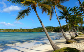 Отдых на курортах Кубы, Доминиканы, Южной Америки